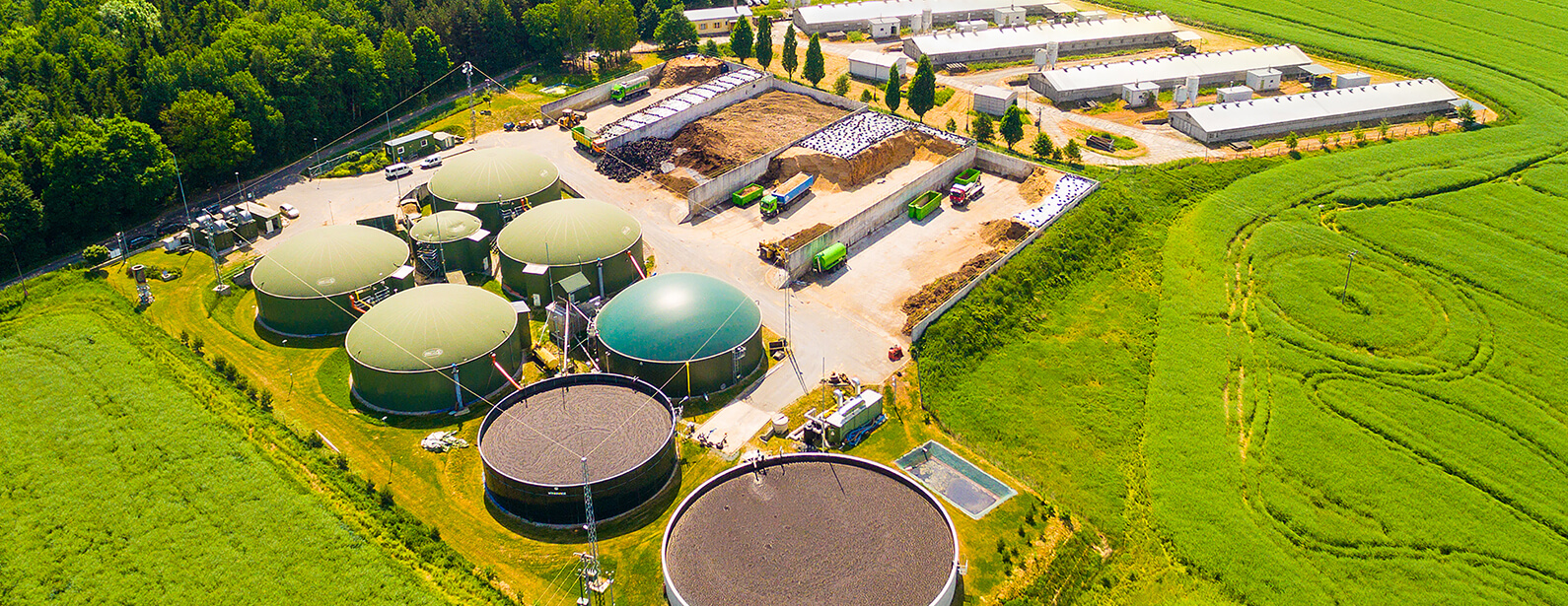 Biogas / Biomass Power Plant
